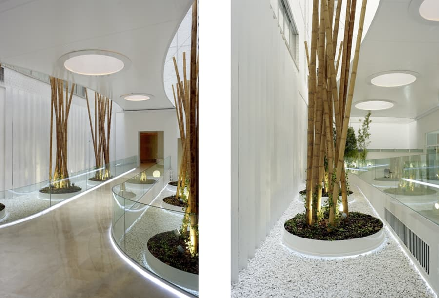 galeria5_1 (1)